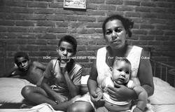 Ubalsfamily
